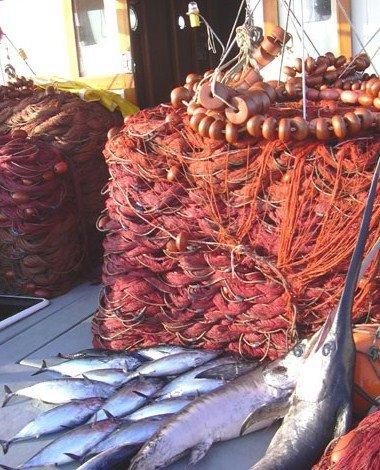 Pesca di video mastyrka